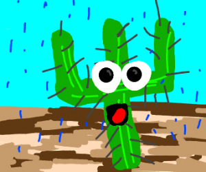Cactus knows what's good
