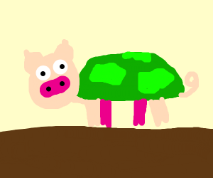 pig in turtle form