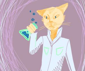 Cat alchemist