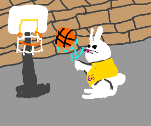 basketball rabbit uses the force