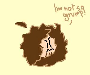 I'm not so grump!