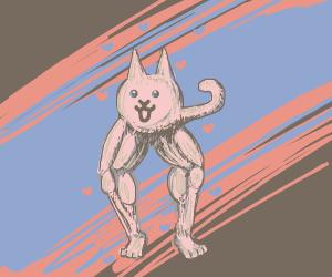 Buff legs cat