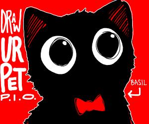 Draw your pet p.i.o!