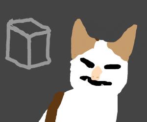 he dont like cube