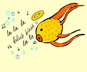Singing angel fish
