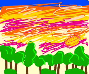 Sunset over a small forest