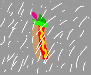 Hot Dog Robin Hood in Snowstorm