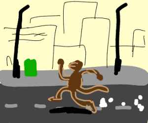 monkey running on street