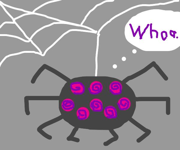 Spider on drugs