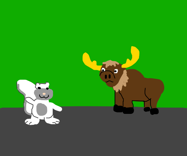 a moose looking at a white squirel