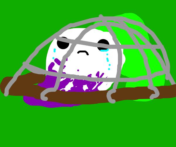 A really sad turnip getting caught