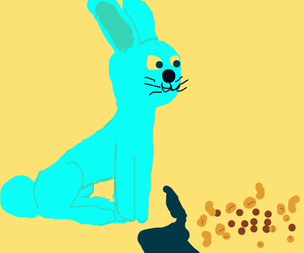 Bunny and Nuts.