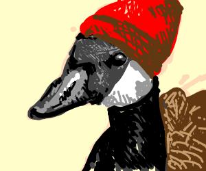 Cold Goose
