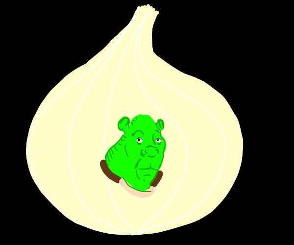 Shrek head in the center of an onion
