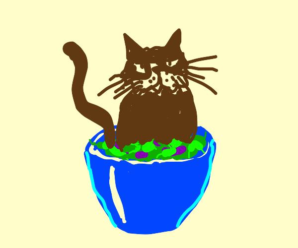 Cat in a salad.