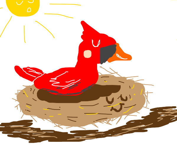 Mellow Nest