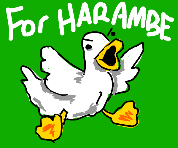 Ducks out for Harambe