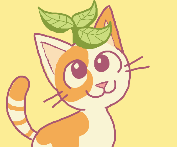 Cat with a plant on their head