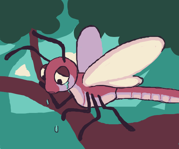 sad dragonfly in the forest