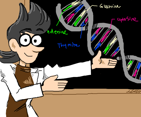 Prof. Teaches dna structure
