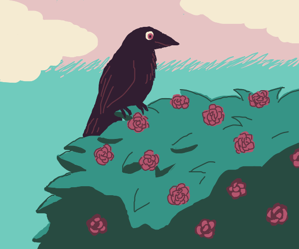 Crow in a rose bush