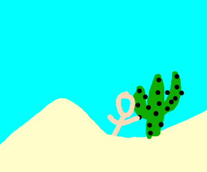person with body stuck in sand and a cactus