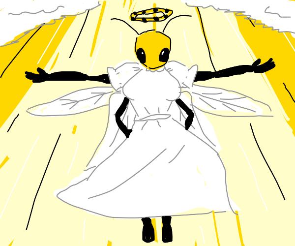 angelic bee anthro