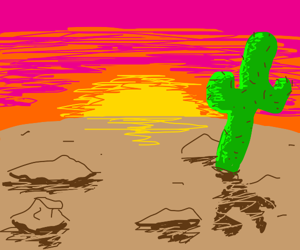 sunset on a desert