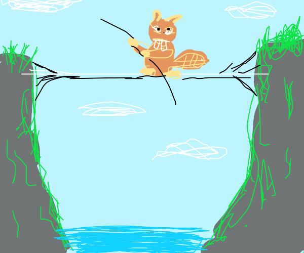 Highwire groundhog
