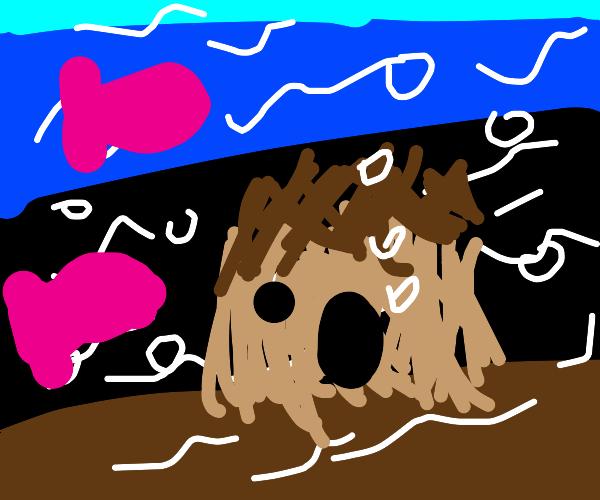 Underwater Hut