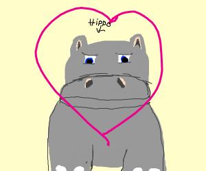 We love hippos