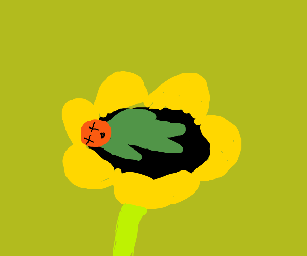 a dead green man on a sunflower