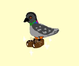 Pigeon wearing Shoes - Drawception