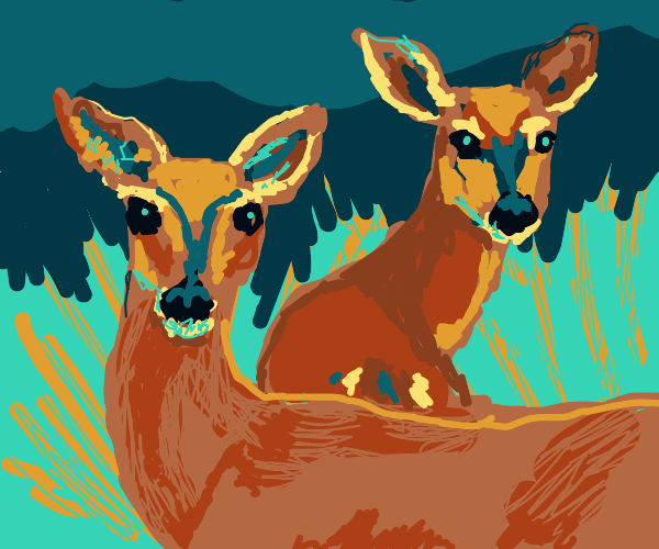 two female deer stare at you