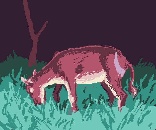 Female deer eating grass