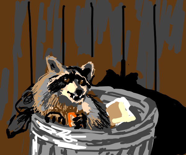 raccoon (a total trash panda)
