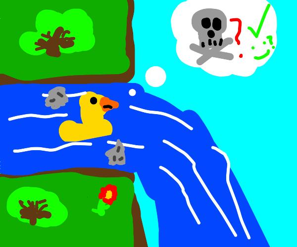 duck contemplating suicide