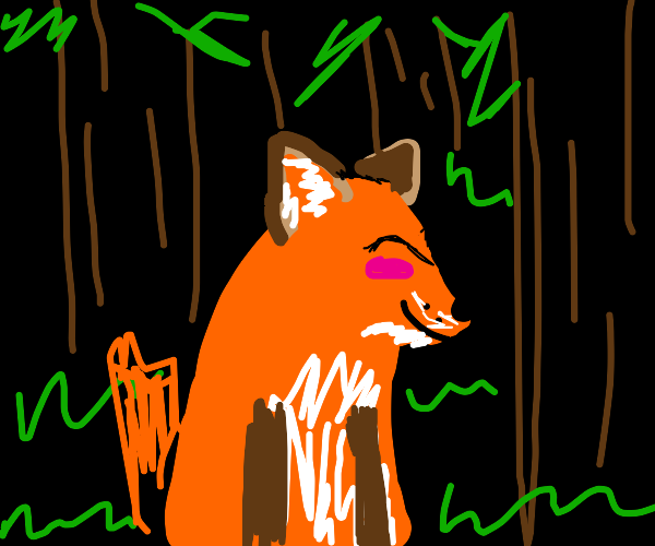 Happy fox in forest