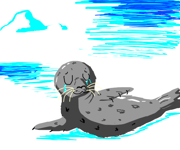Sad seal going UwU