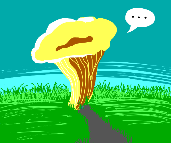 Mushroom in grass is speeches