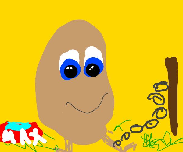 Pet Potato