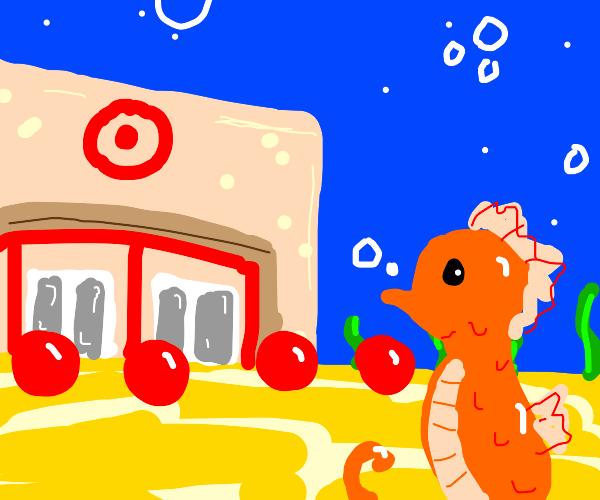 Seahorse goes to underwater target