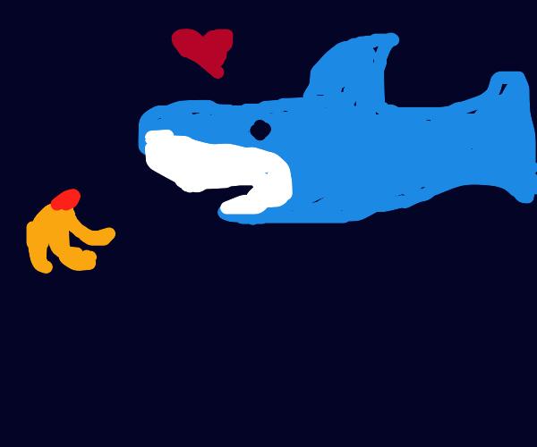 A shark loves bananas