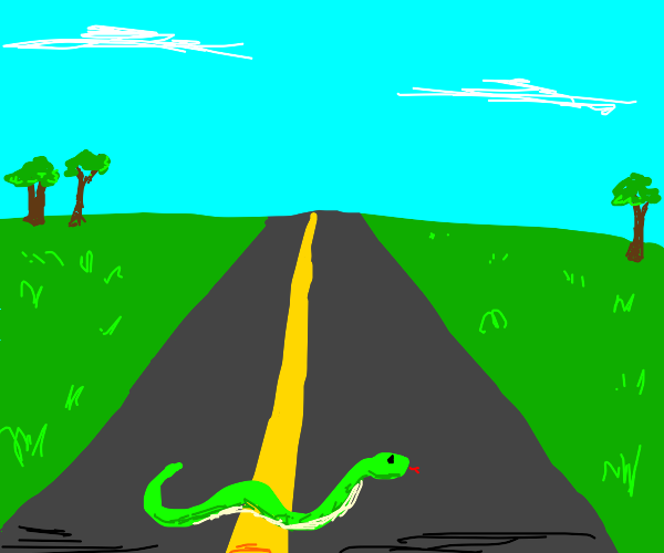 Snake crossing road