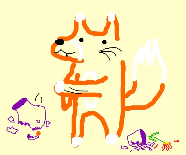 Fox cat wants to BREAK THINGS