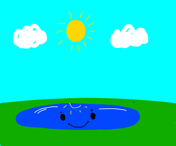 smiling puddle