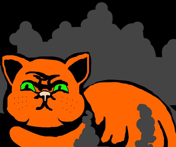 Orange cat in smoke