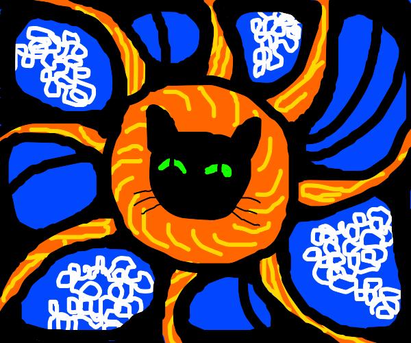 cat in da sun