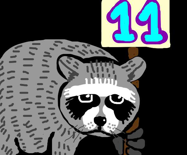 Raccoon holds sign that says 11