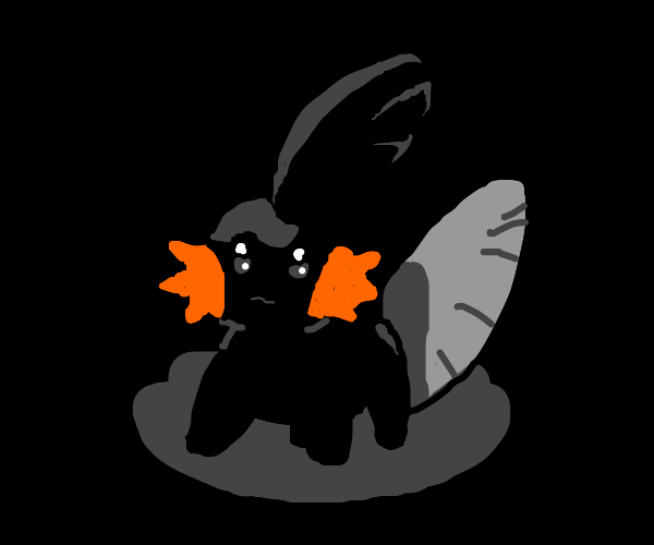 Black Mudkip